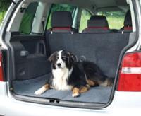 Boot beskyttelse til hunde COLLINETTE, 147x120cm