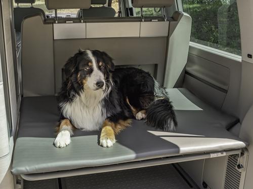 Hundematratze - Heckauflage für VW T5/T6 California