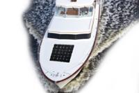 Panneau solaire pour bateau